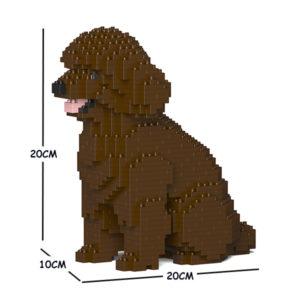 Toy Poodle 03S-M05